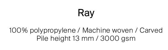 DESCRIZIONE RAY C